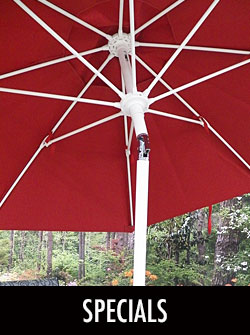 My Umbrella Shop Umbrella Specials